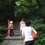 Mari and Yumi going up the stairs to a shrine